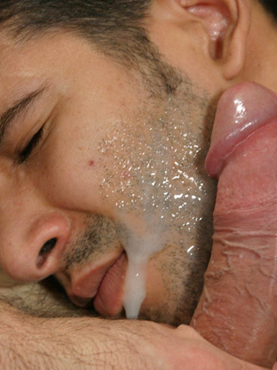 HD Video Gay Facials XXX